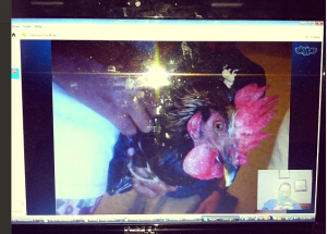 Skype call with Corie