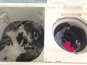 This is the washing machine.  On the left is the wash basin.  On the right is the rinse basin.